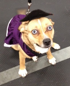 Roxie's Graduation
